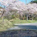 千葉県 佐久間ダム湖親水公園へのアクセス